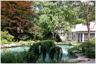 Skillman Home | Weston, MA Tree Service Case Study